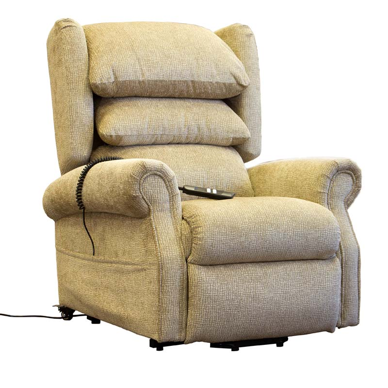Homeu003eLift and Tilt Recliner Chairsu003eEllen Dual Motor Riser Recliner Chair  sc 1 st  Care to Comfort : dual motor riser recliner chair - Cheerinfomania.Com